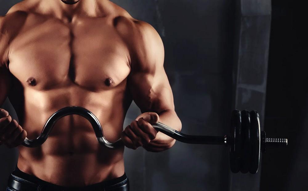 Testostérone et musculation : ce qu'il faut savoir
